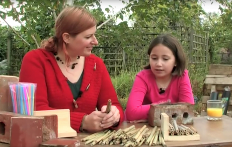 A guide to building a bug hotel!