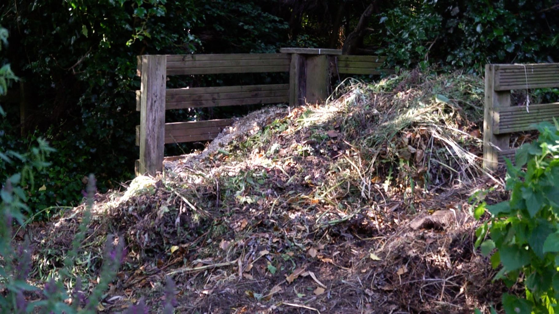 A large compost heap