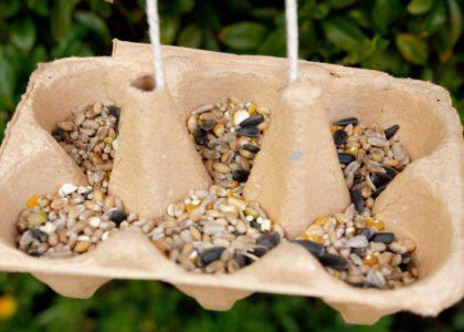 An egg box bird feeder filled with bird seed