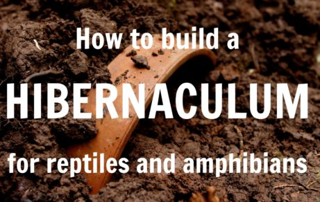 How to build a hibernaculum